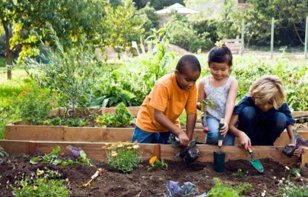 three kids gardening