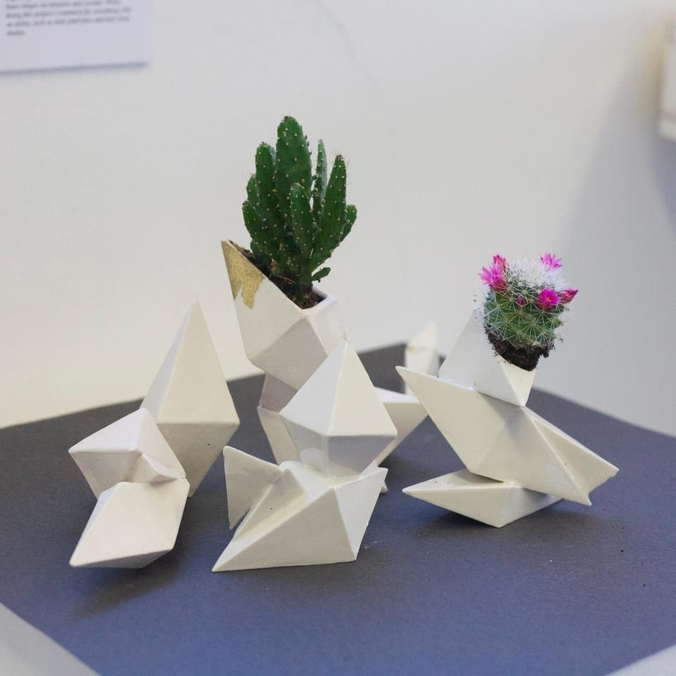 Two cacti in geometric vases