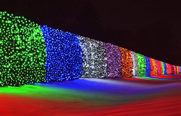 holiday lights wall