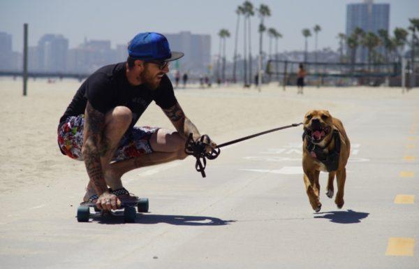 skateboarder with dog