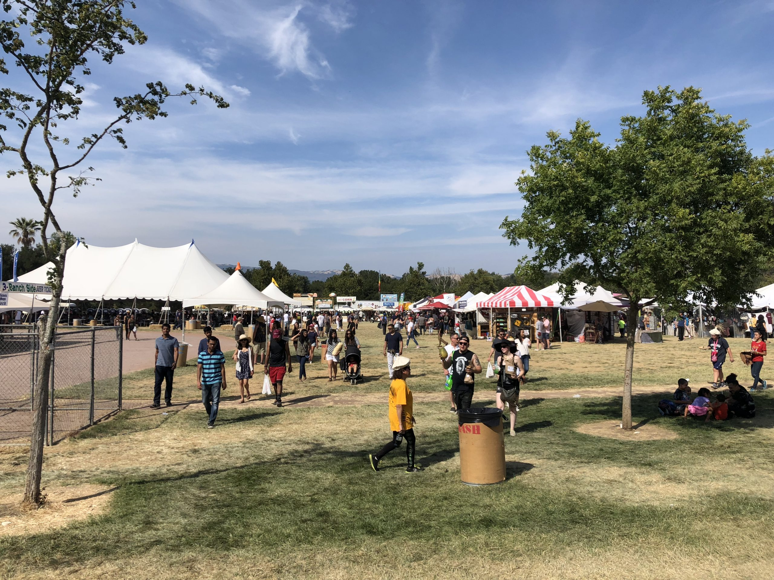 Small crowds walk around fairgrounds of the Garlic Festival before the mass shooting