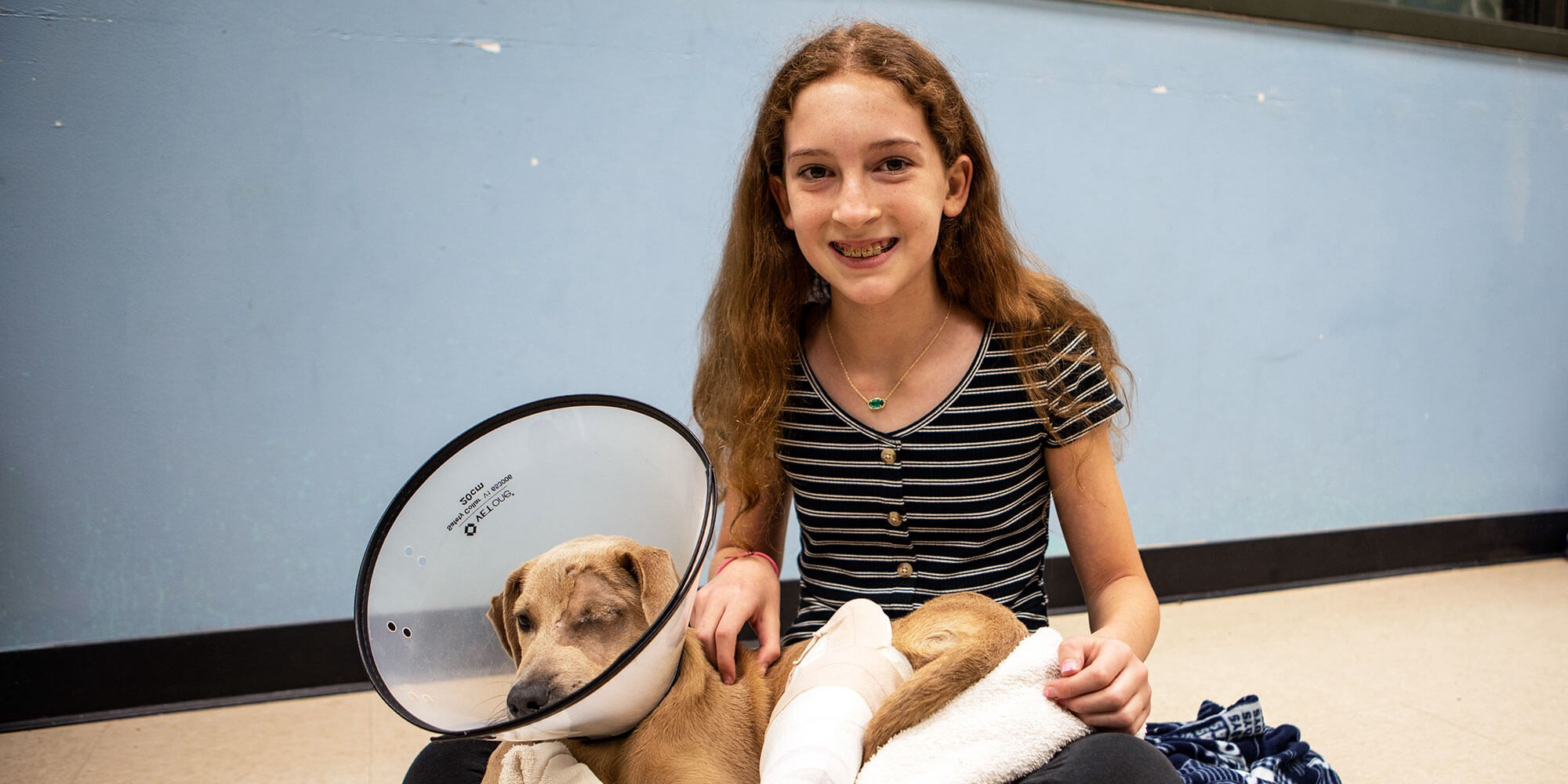 one eyed dog wearing a cone in a girl's lap