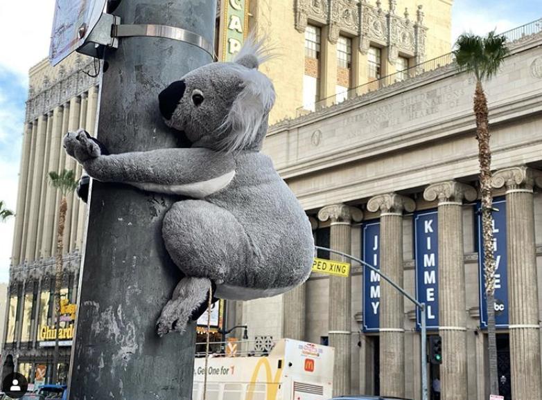 Koala stuffed animal holding on to a pole outside