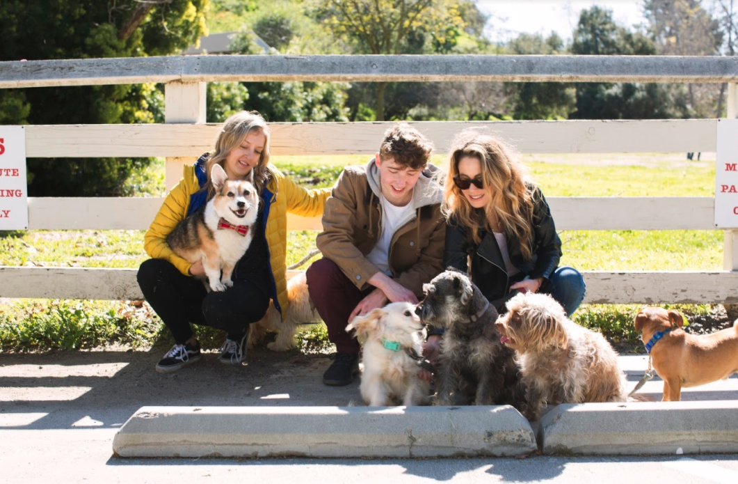 three people sitting on a curb petting dogs