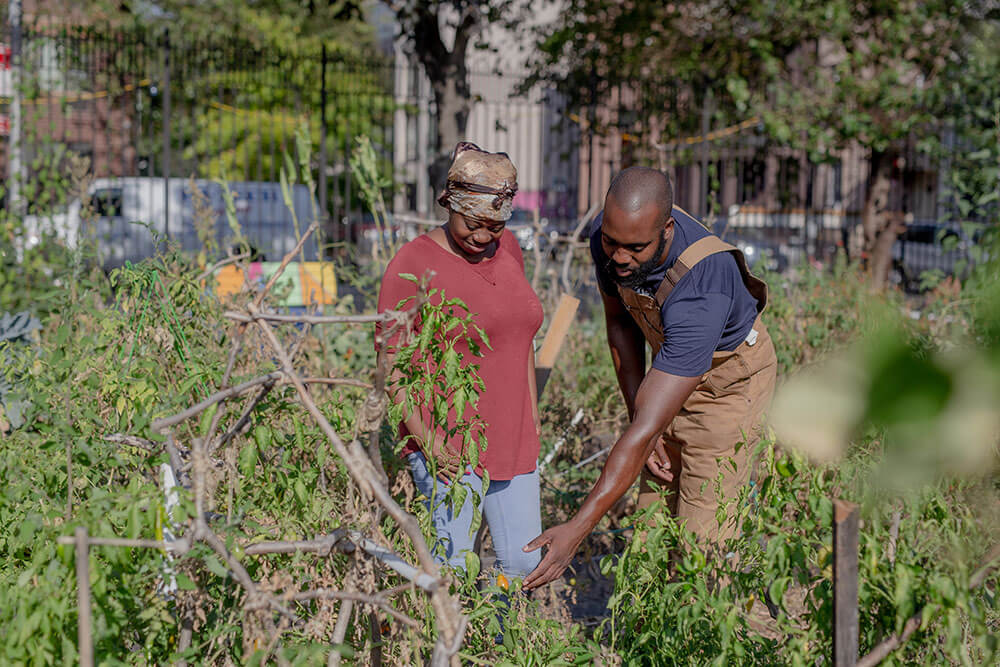 A Black man and woman walking through an urban garden admiring plants
