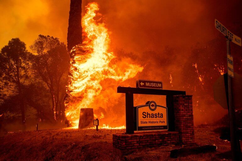 Carr Fire flames engulf a tree behind a sign for Shasta