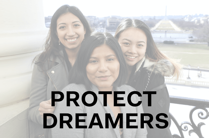 """SEO graphic of three women with the caption """"PROTECT DREAMERS"""""""